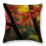 Acer Finish Throw Pillow