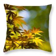 Acer Glow Throw Pillow