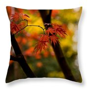 Acer Silhouette Throw Pillow