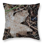 Aceraceae Untouched Throw Pillow