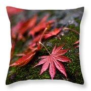 Acers Fallen Throw Pillow