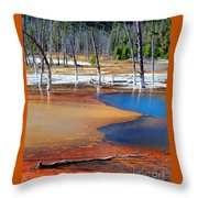 Acid Soup Yellowstone Throw Pillow