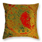 Acinar Cell, Tem Throw Pillow
