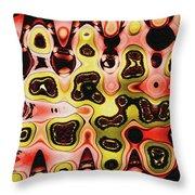 Acorn And Manzanita Display Abstract Throw Pillow