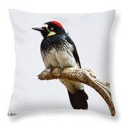 Acorn Woodpecker Throw Pillow
