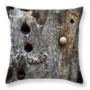 Acorn Woodpecker Cache, Sequoia National Park, Ca  September 2016 Throw Pillow