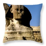 Acquire Knowledge Throw Pillow