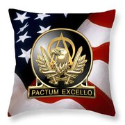 Acquisition Corps - A A C Regimental Insignia U. S. Flag  Throw Pillow