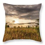 Across Golden Grass Throw Pillow