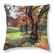 Across The Creek II Throw Pillow