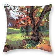 Across The Creek II Throw Pillow