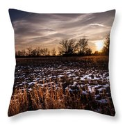 Across The Frozen Fields  Throw Pillow