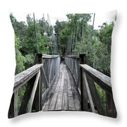 Across The Great Divide Throw Pillow