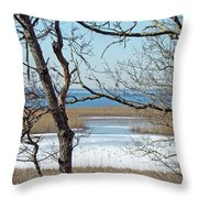 Across The Marsh To Woodneck Beach - Cape Cod Throw Pillow