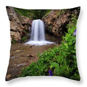 Adams Canyon Lower Falls Spring Throw Pillow