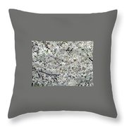 Adams County White-out Throw Pillow