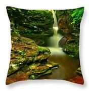 Adams Falls Portrait Throw Pillow
