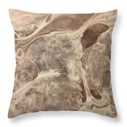 Adaptation Throw Pillow by Sonya Wilson