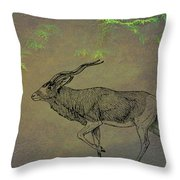 Addax Antelope Throw Pillow