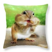 Addicted To Nuts Throw Pillow