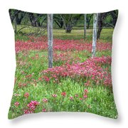 Adding A Splash Of Color-indian Paintbrush In Texas Throw Pillow