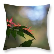 Adding Color To The Holly Throw Pillow