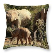 Addo Elephant Family Throw Pillow