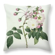 Adelia Aurelianensis Throw Pillow