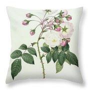 Adelia Aurelianensis Throw Pillow by Pierre Joseph Redoute