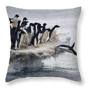 Adelie Penguin Pygoscelis Adeliae Throw Pillow by Tui De Roy