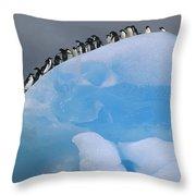 Adelies In Blue Iceberg Throw Pillow