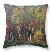Adirondack Birch Foliage Throw Pillow