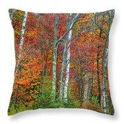 Adirondack Birches In Autumn Throw Pillow
