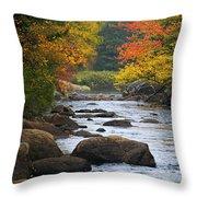Adirondack Fall Stream 2 Throw Pillow