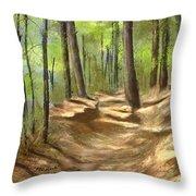 Adirondack Hiking Trails Throw Pillow