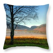 Adirondack Landscape 1 Throw Pillow