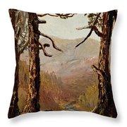 Adirondack Landscape Throw Pillow
