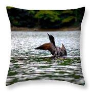 Adirondack Loon 4 Throw Pillow