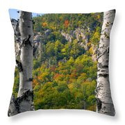 Adirondack Mountains New York Throw Pillow