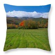 Adirondack Mountains, Upper State New Throw Pillow