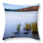 Adirondack View 4 Throw Pillow
