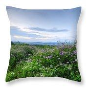 Adirondack View 6 Throw Pillow