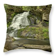 Adler Falls Throw Pillow