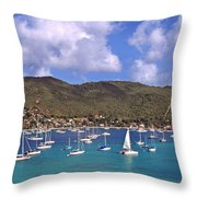 Admiralty Bay Throw Pillow by Thomas R Fletcher
