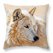 Adobe White Throw Pillow