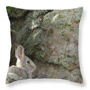 Adobetown Bunny Throw Pillow