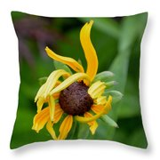 Adolescence Throw Pillow by Ekta Gupta