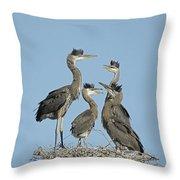 Adolescent Great Blue Herons Throw Pillow