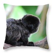 Adorable Goeldi's Marmoset In A Tree Throw Pillow