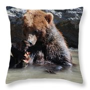 Adorable Grizzly Bear Playing With A Maple Leaf While Sitting In Throw Pillow